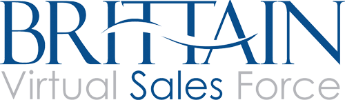 Logo for Virtual Sales Team
