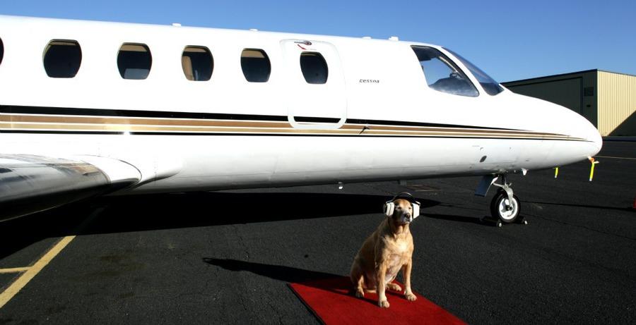 Innisfree Jet Center Pensacola Fl Jobs Hospitality Online