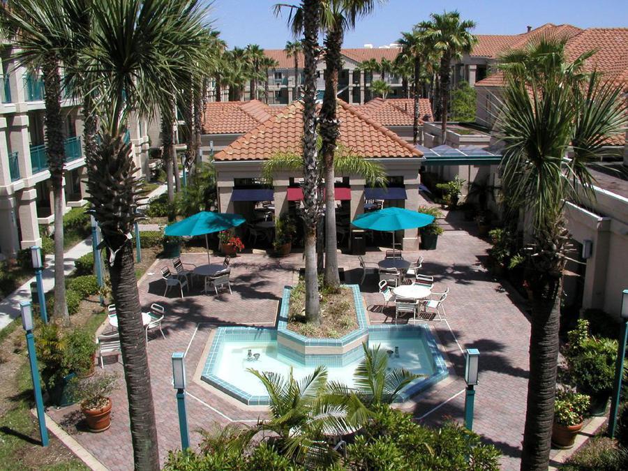 Hotels On Lake Buena Vista Dr Orlando Fl