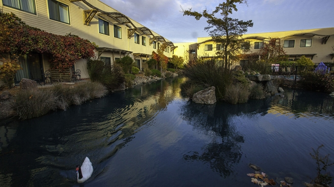 Doubletree By Hilton Hotel Amp Spa Napa Valley American