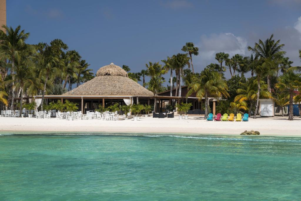Divi aruba phoenix resort palm beach palm eagle beach - Divi beach aruba ...